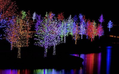 """Tap Into the Power of """"Color Consolidation"""" for Your Christmas Light Display"""